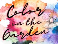 Color In The Garden class