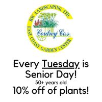 Senior Day - 10% Off Plants