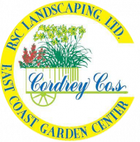 Cool Season Vegetable Container Gardening Class
