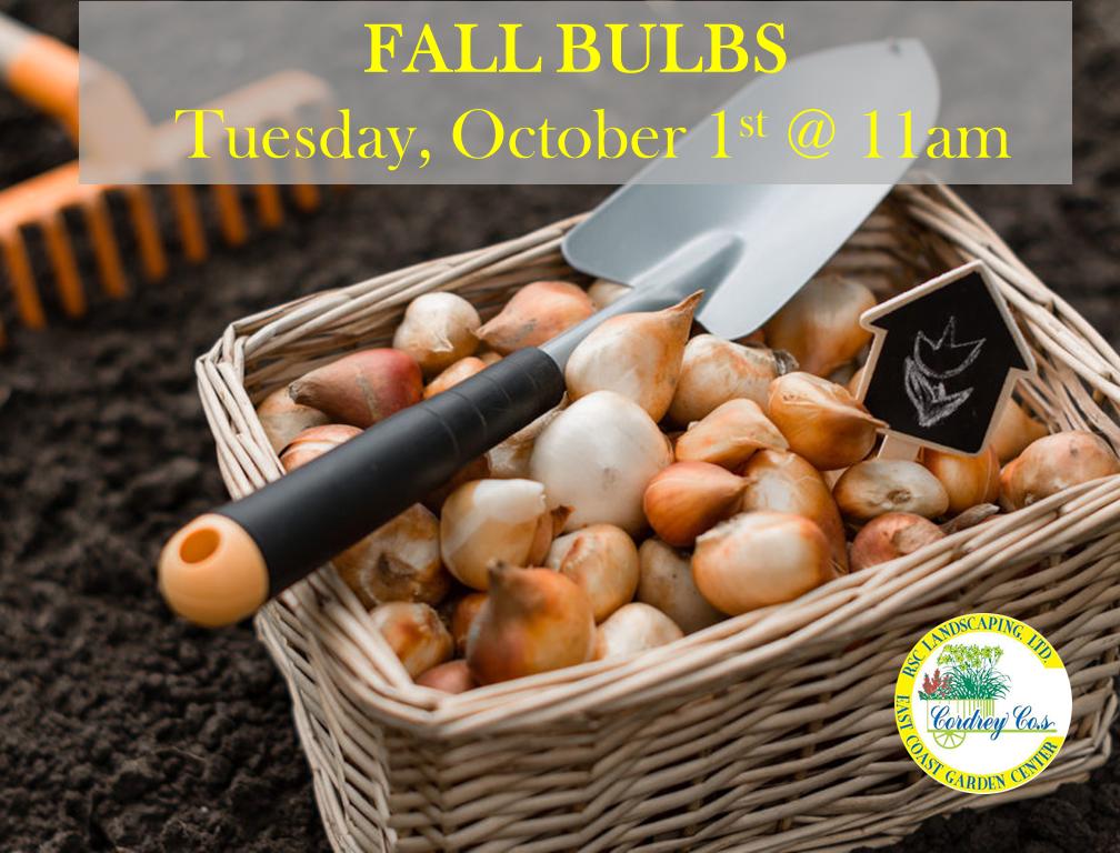 Fall Bulb Class - Oct 1st
