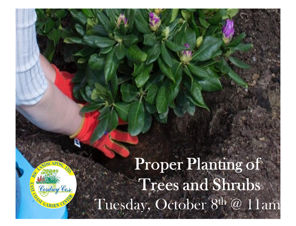 Proper Planting of Trees & Shrubs - Oct 8th
