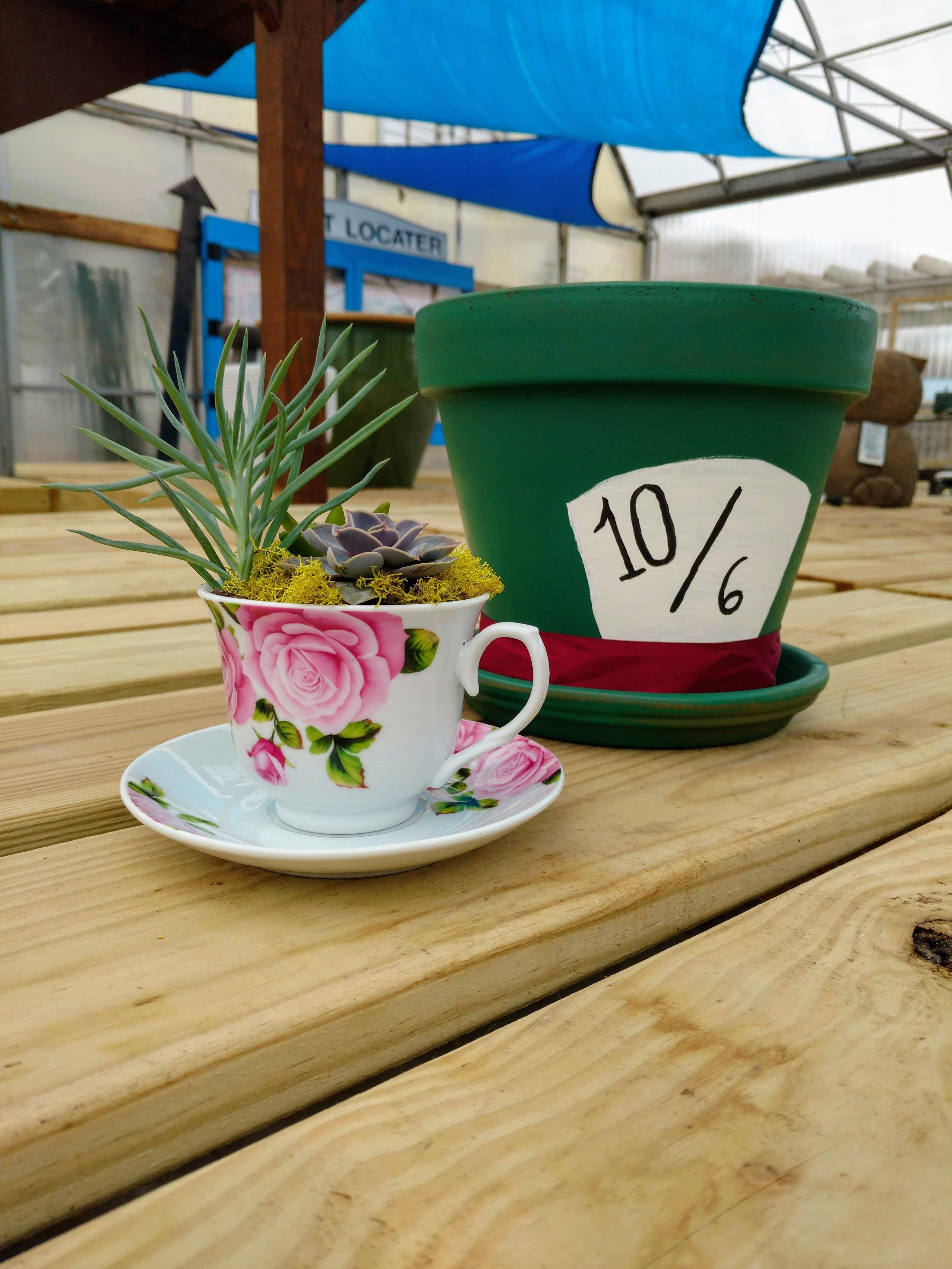 Teacup Workshop